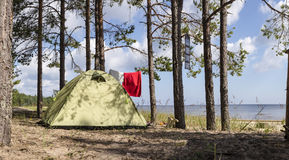 Tent stands in a pine forest on the sea shore near the sandy beach Stock Photos
