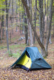 Tent of the tourist in the wood Stock Photography