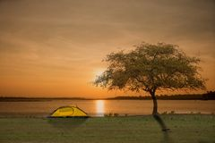 Tent and tree in green field besides the lake. With sunset or sunrise background Royalty Free Stock Photo