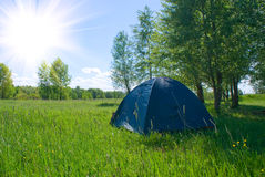 Tent under a tree. Under a tree, on a green grass the tent of green color costs Stock Images