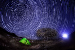 Tent under a tree against the night sky Royalty Free Stock Images