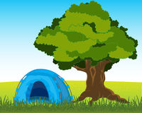 Tent under tree Stock Photos