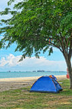 Tent under tree by sea Royalty Free Stock Photography