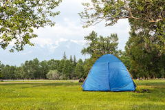 Tent under tree in wood summer Stock Image