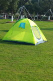 Tent in wild Stock Photography