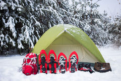 Tent in the winter forest. Stock Image