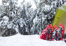 Tent in the winter forest. Royalty Free Stock Images
