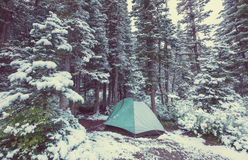 Tent in winter forest Royalty Free Stock Photography