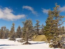 Tent in winter landscape. Trekking tent, poles, red  snowshoes on snow between trees. In the mountains. Nice sunny winter day Royalty Free Stock Photography