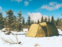 Tent in winter landscape. Trekking tent, poles, red  snowshoes on snow between trees. In the mountains. Nice sunny winter day Royalty Free Stock Photo