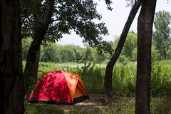 Tent in the woods Royalty Free Stock Photo