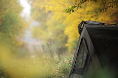 Tent in the woods royalty free stock image