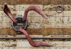 Tentacles. The tentacles of a giant octobus break trhough a porthole of an old ship Royalty Free Stock Photo
