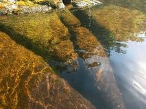 Tentacoli di pietra che vanno nell'acqua fotografia stock libera da diritti