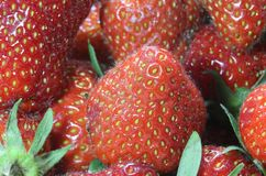 Tentations : fond des fraises mûres rouges Photo libre de droits