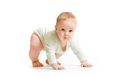 Tentativa isolada criança do bebé a de pé imagem de stock royalty free