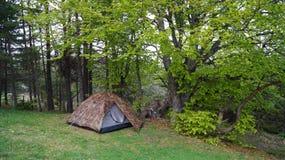 Tente campante Photos stock