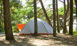 Tente dans forest.JH Image libre de droits