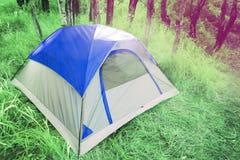 Tente de camping dans la forêt photographie stock libre de droits