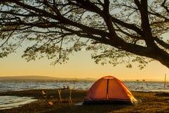 Tente de camping orange sous l'arbre au backgrou de lever de soleil ou de coucher du soleil Image libre de droits