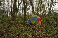 Tente de garçons dans les bois Photos stock
