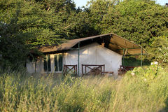 Tente de safari Image libre de droits