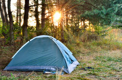 Tente de touristes, contre le contexte de l'aube dans les bois Images libres de droits