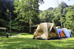 Tente de touristes dans la forêt Image libre de droits