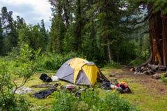 Tente en clairière de forêt image stock