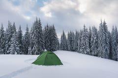 Tente verte en montagnes d'hiver photos stock