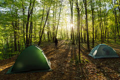 Tenten in een mooi bos met de mens  Royalty-vrije Stock Afbeeldingen