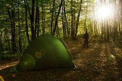 Tenten in een mooi bos met de mens Stock Foto's