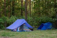 Tenten in het hout Stock Fotografie