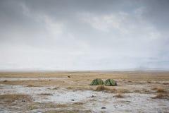 Tenten in Mongools landschap Royalty-vrije Stock Afbeelding