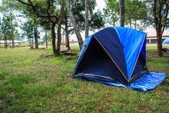 Tenten voor het kamperen Stock Afbeelding