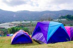 Tentes de camping au parc national de Doi Inthanon Images stock