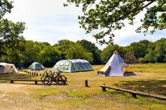 Tentes de camping de famille sur un pré près des régions boisées Images libres de droits