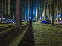Tentes de camping récréationnelles avec silhouetté des arbres alpins Photographie stock