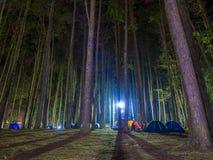 Tentes de camping récréationnelles avec silhouetté des arbres alpins Image stock