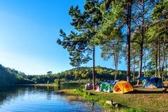 Tentes de camping sous des pins avec la lumière du soleil au lac pang Ung, Mae Hong Son en THAÏLANDE Photographie stock