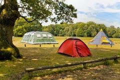 Tentes de famille dans un terrain de camping de forêt Images libres de droits