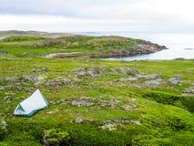 Tenting στο Λαμπραντόρ, ατλαντικός Καναδάς Στοκ Φωτογραφία