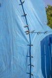 Tenting à la maison/fumigation structurelle Images stock