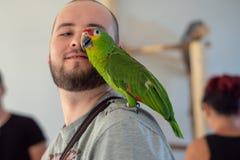 Tentoonstelling van Carmen-papegaaien Polska Katowice 2018 07 21 royalty-vrije stock afbeeldingen