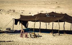 Tents Bedouin. In the Sinai peninsula. Egypt royalty free stock photos