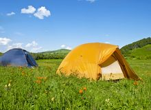 Tents on a blossoming meadow Stock Photos
