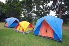 Tents for camping. Row of tents for camping on grass stock images