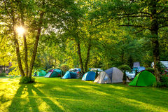 Tents Camping area, early morning, beautiful natural place Royalty Free Stock Image