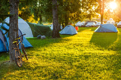 Free Tents Camping Area In Beautiful Natural Place With Big Trees And Green Grass Stock Image - 98679081