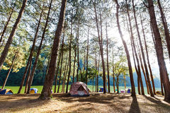 Tents in camping site near lake Royalty Free Stock Images
